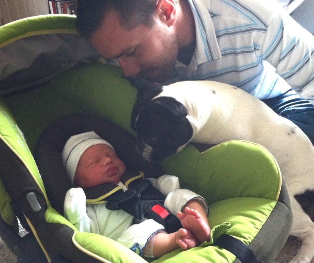 Introducing Your Dog To Your Newborn