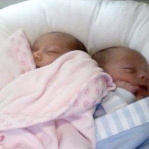 Dockatot twins 2
